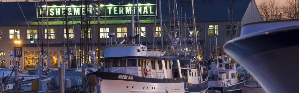 Seafood 101 - Home